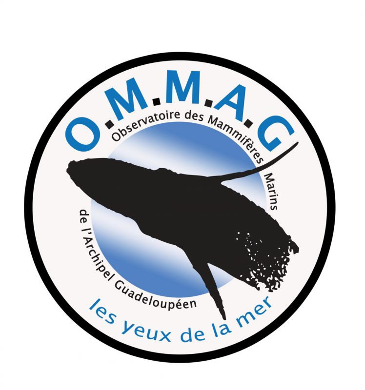 tl_files/images/Logo OMMAG 2012 Comp.jpg